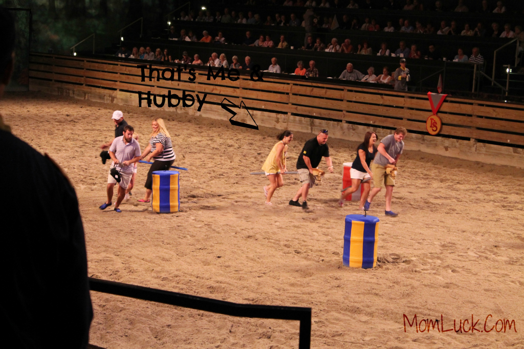 dixie stampede branson-Fun Entertainment in Branson