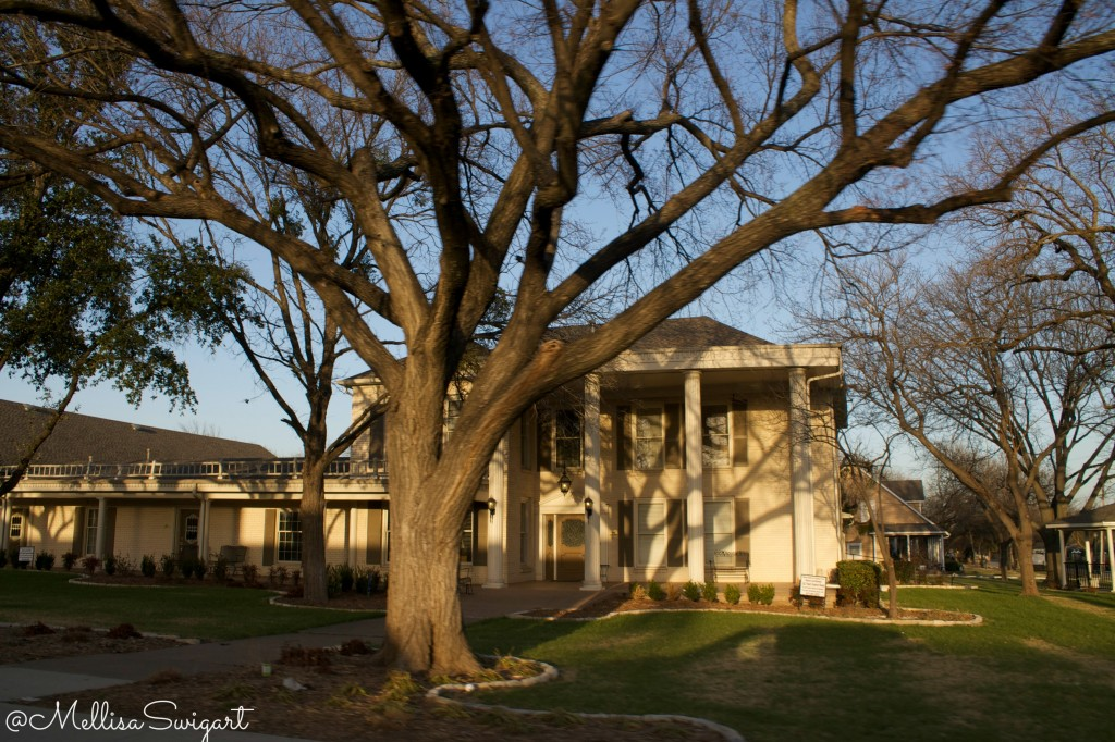 reasons to visit grapevine texas