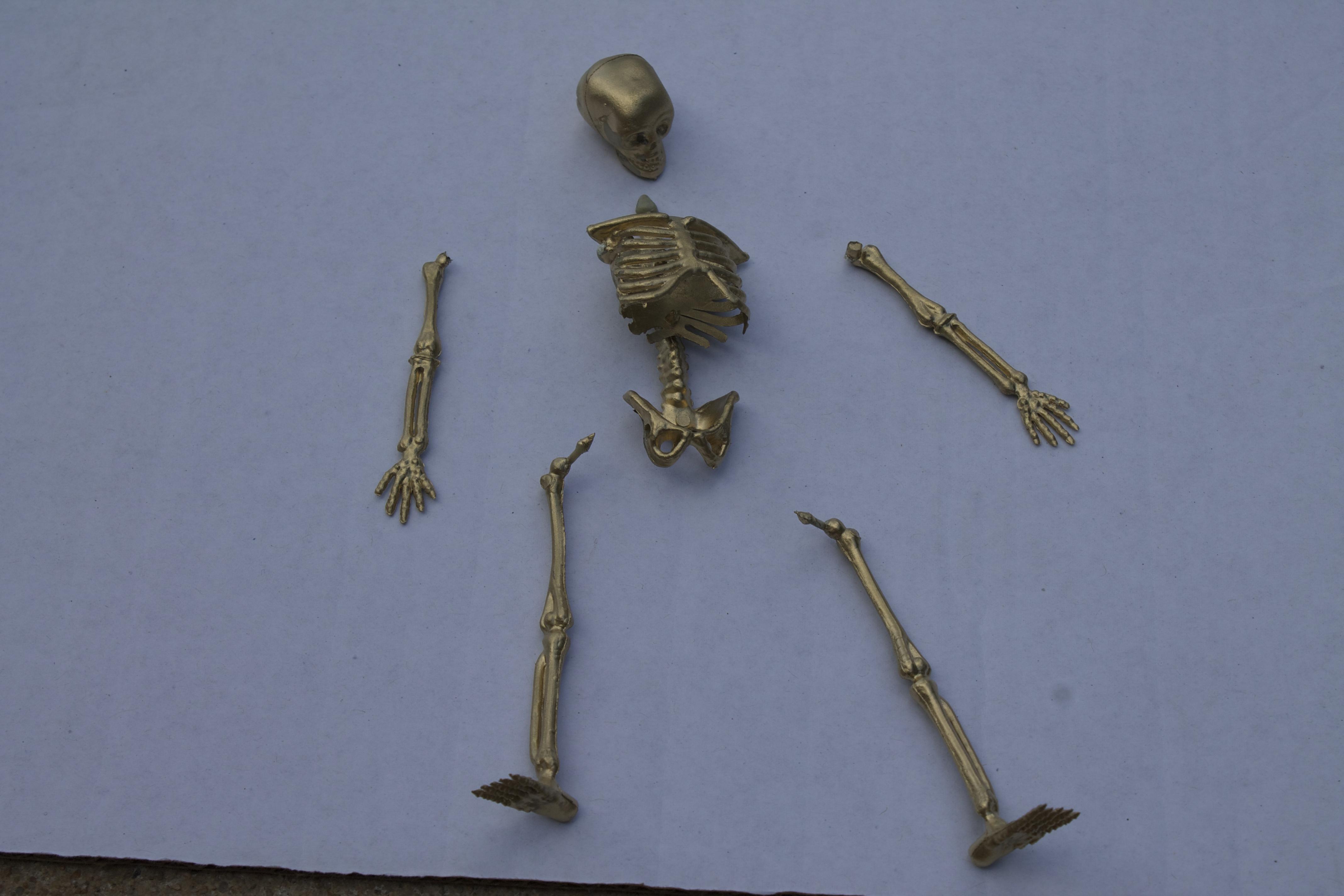 skeleton trophies