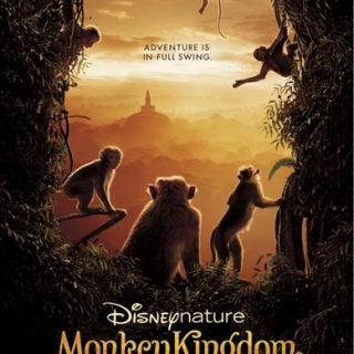 See Why Monkey Kingdom is a Film that you DONT want to miss!