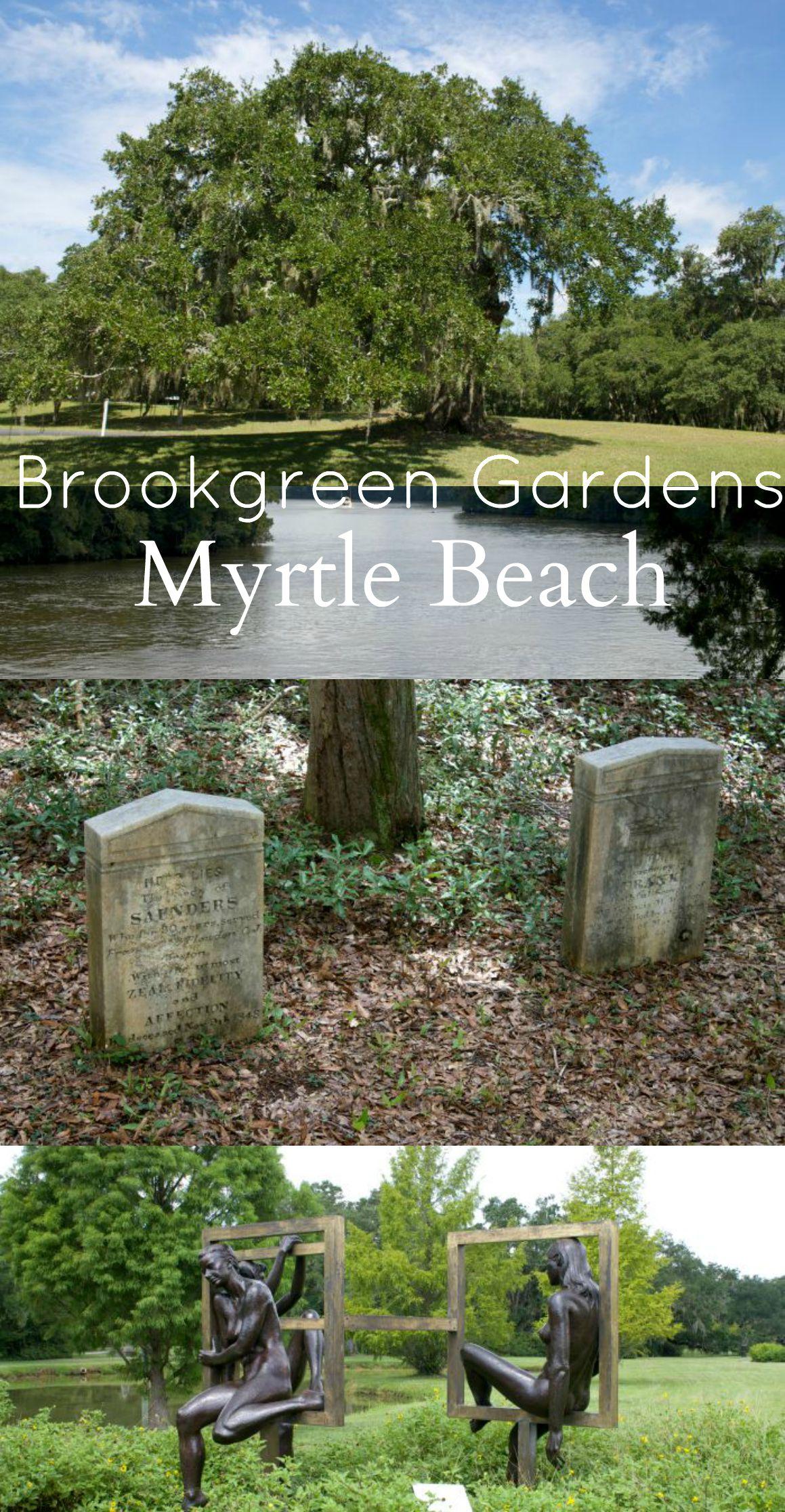 Myrtle Beach Attractions Brookgreen Gardens