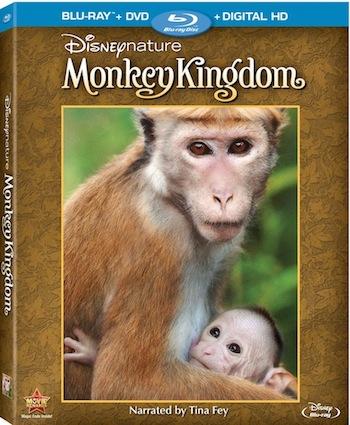 DisneynatureMonkeyKingdomBluray small[1]