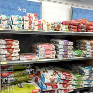 where to get free dog food