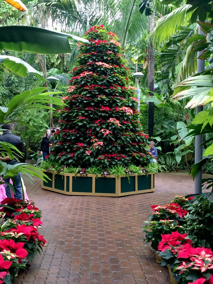 Myriad Gardens Holiday Events