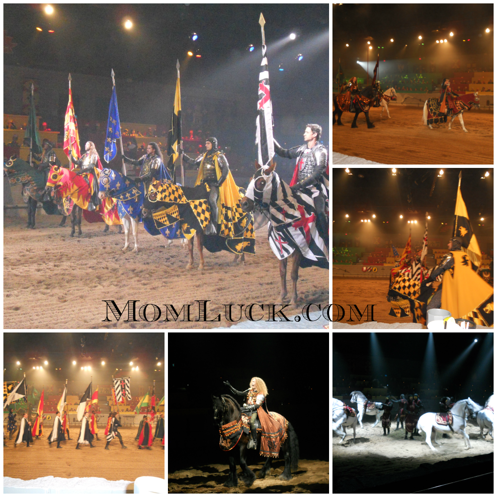 Medieval Times Dinner Tournament Dallas Review Mom Luck