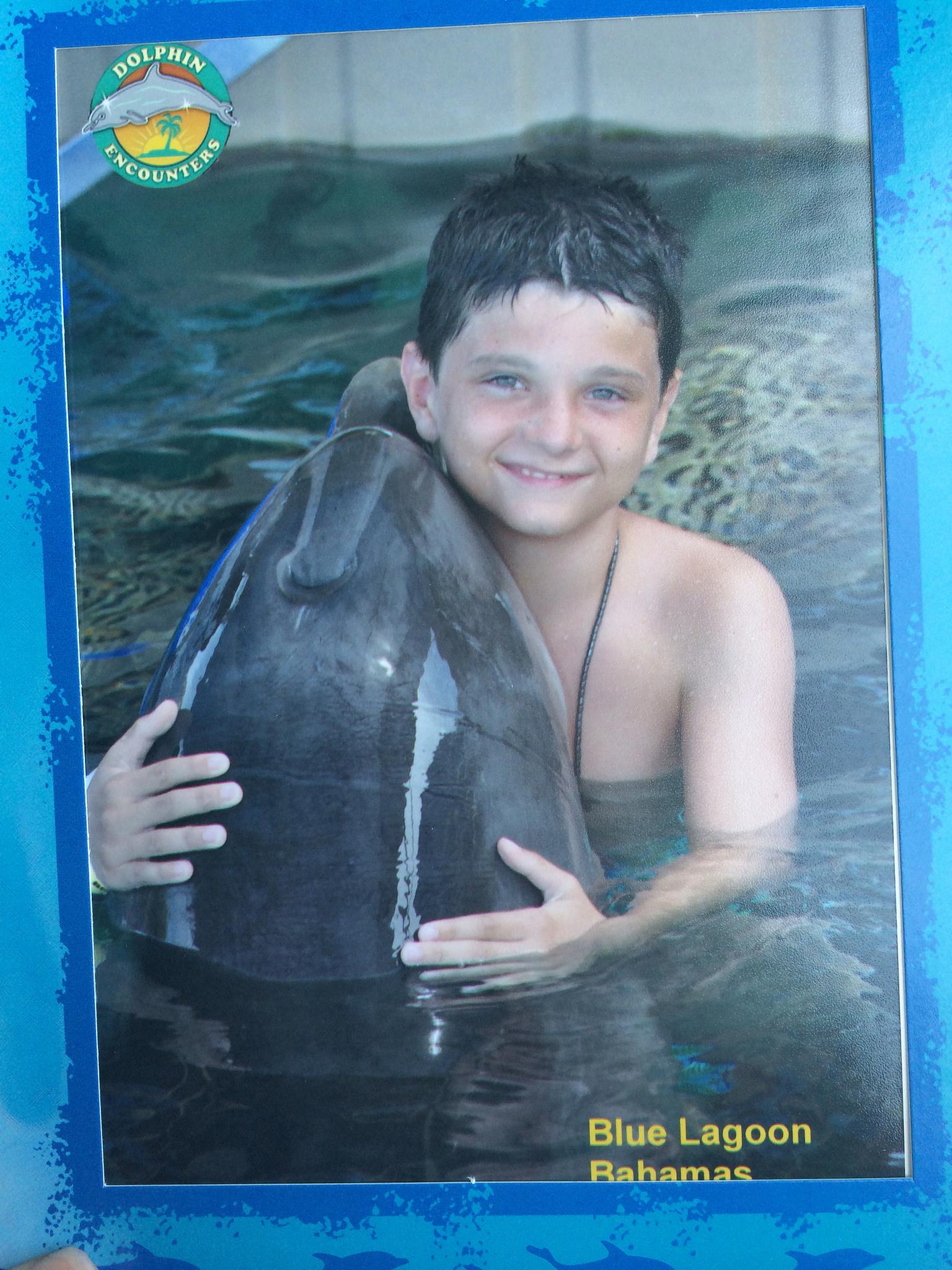 blue lagoon island-dolphin encounters