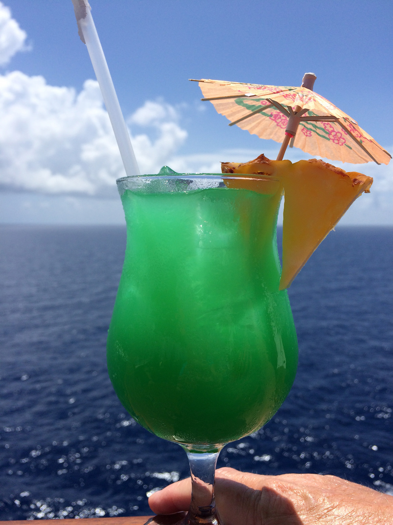 carnival cruise line tips