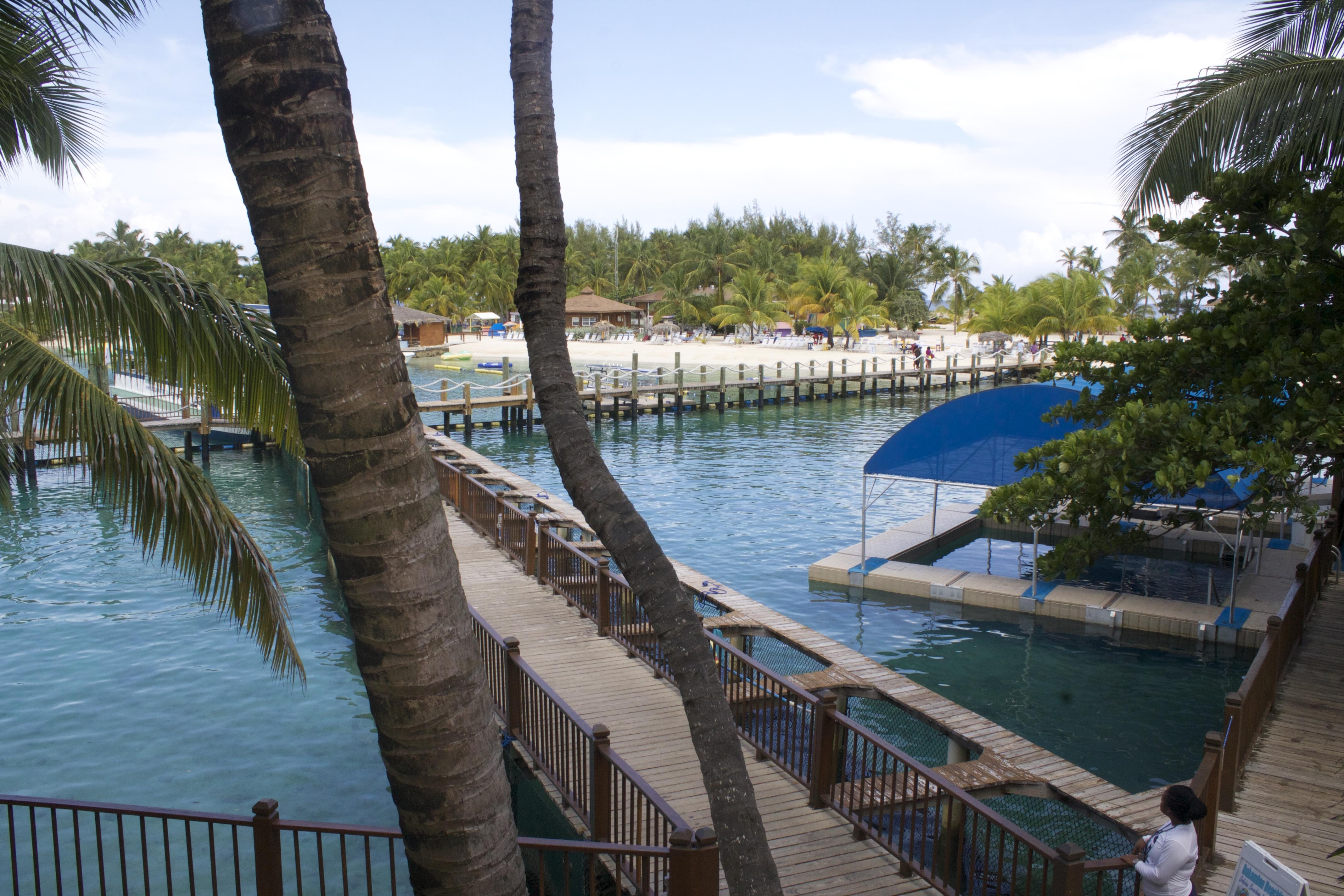 blue lagoon island-nassau bahamas island