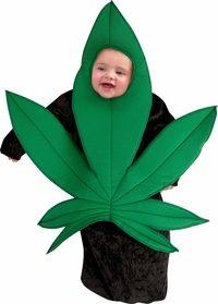 Baby Dressed as a Marijuana Plant-Has Society Gone Too Far?