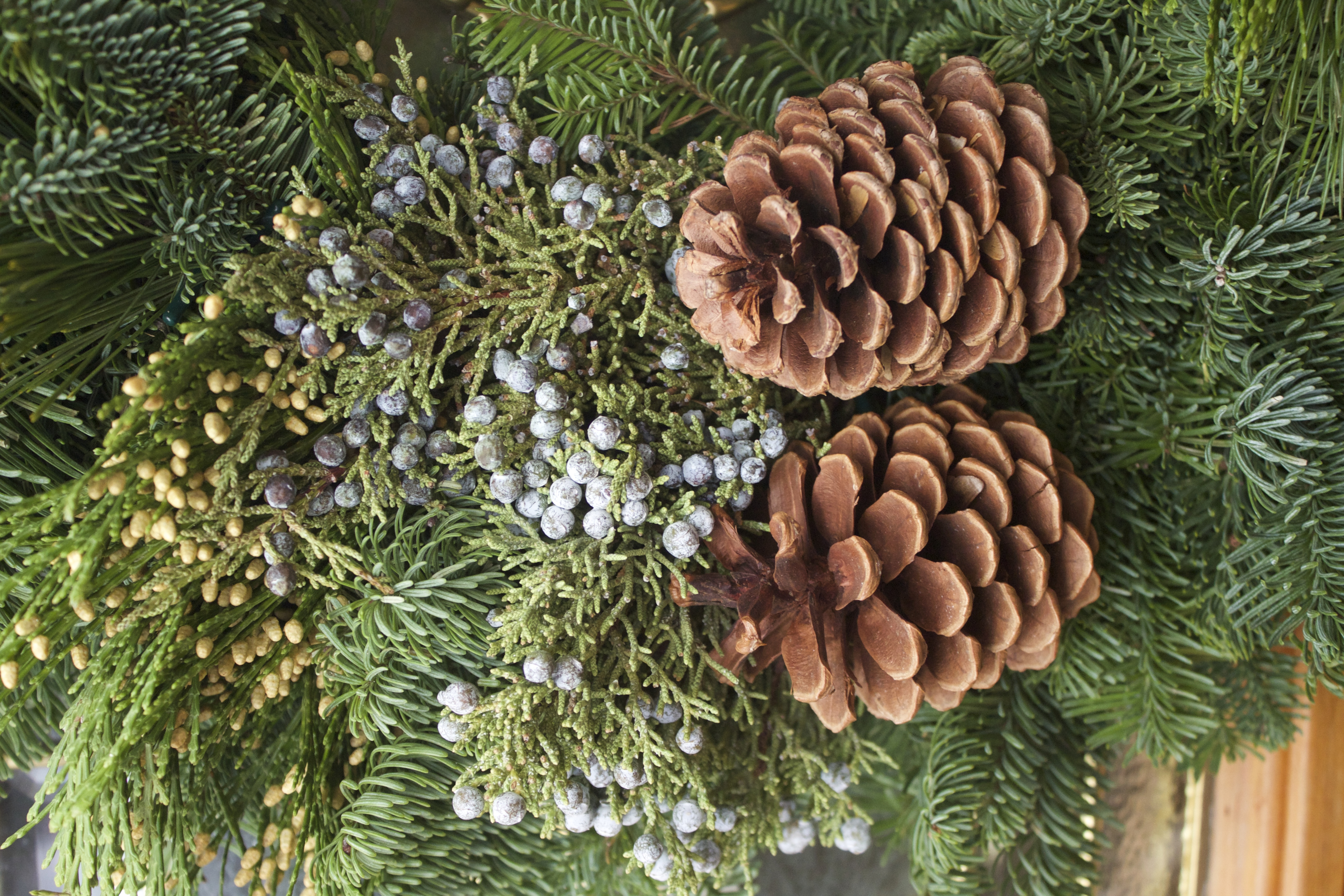 live christmas wreaths online