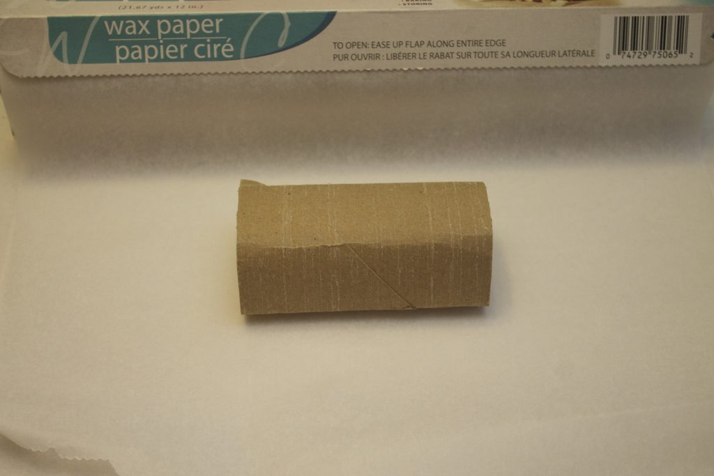 toilet paper crafts-noise makers