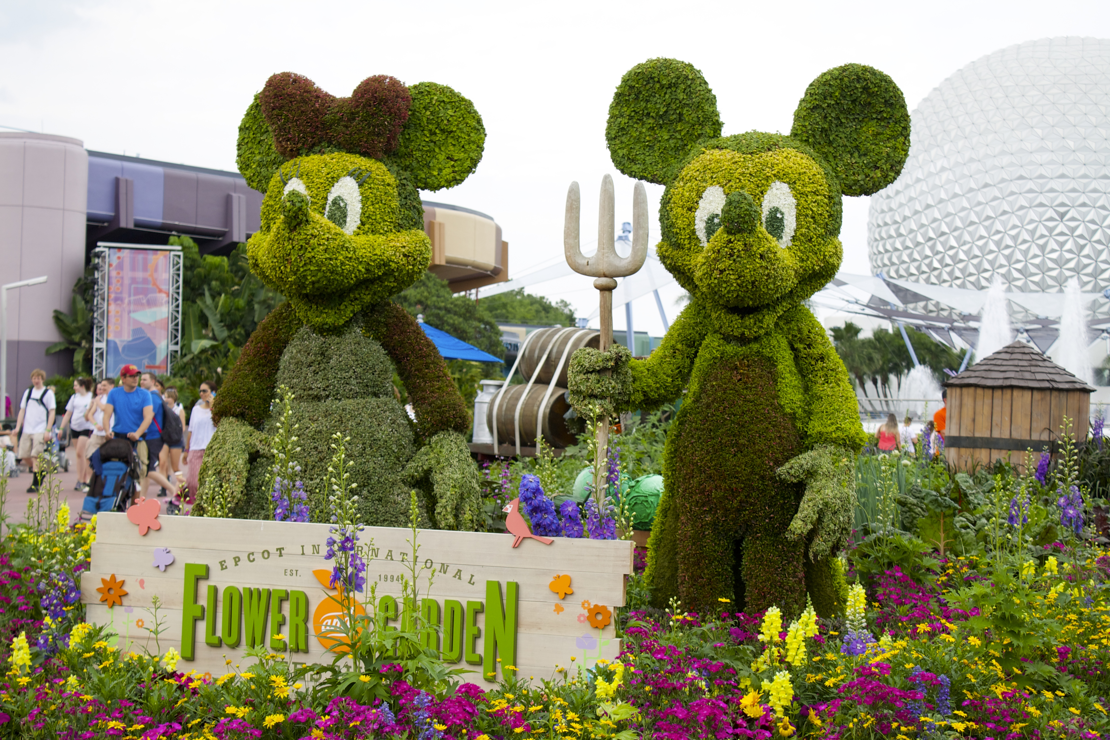 Epcot Flower And Garden Festival Pictures