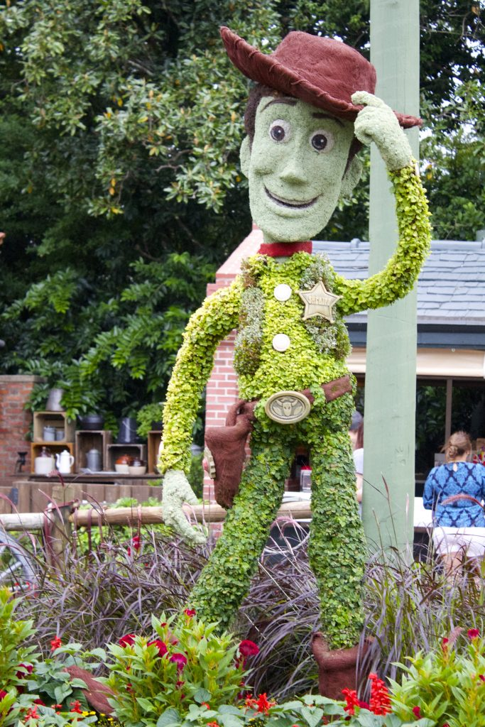 woody from toy story plant