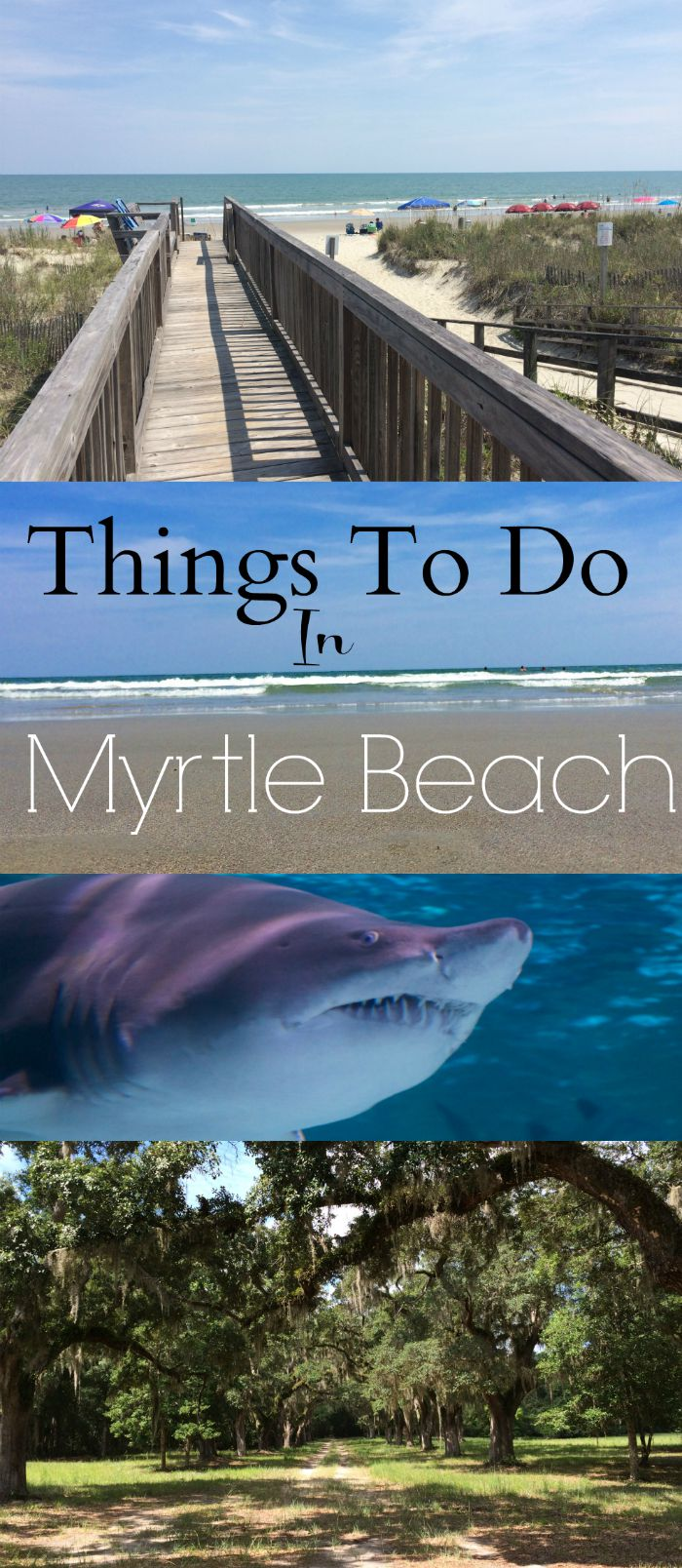 Things to do in myrtle beach south carolina for Cool things to do in charleston sc