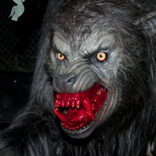 An American Werewolf in london House at Halloween Horror Nights 25