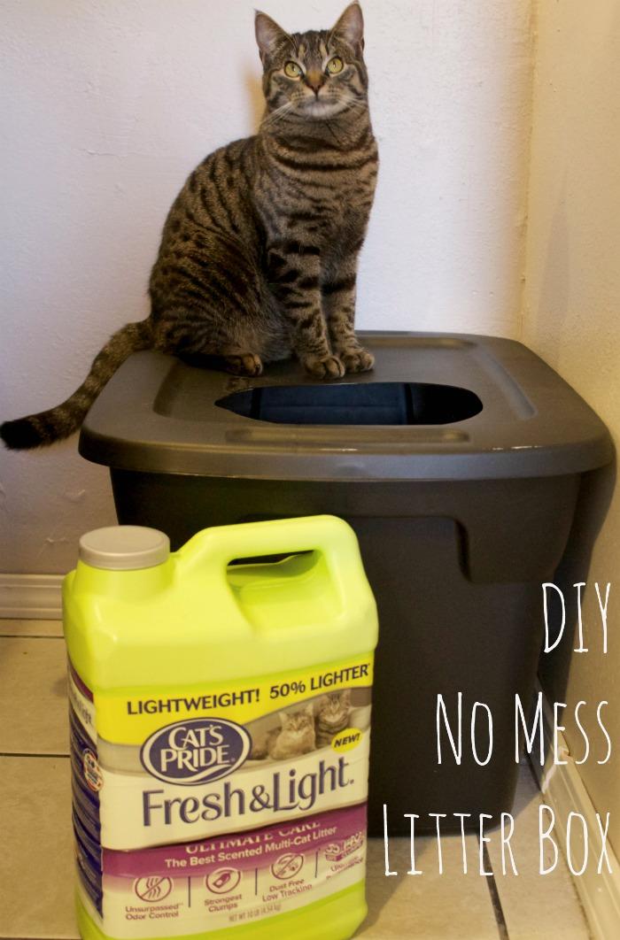 Diy Mess Free Cat Litter Box Mom Luck