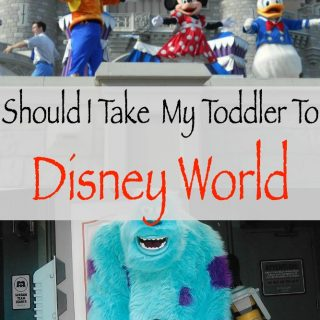 Should I Take My Toddler To Disney