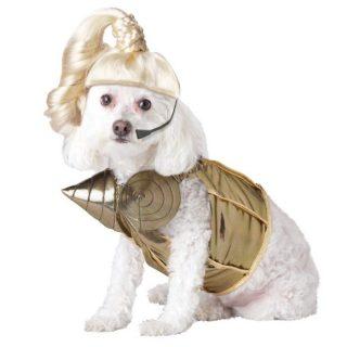 Dog Costume Pop Star