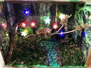 Animal Habitat Project For Kids