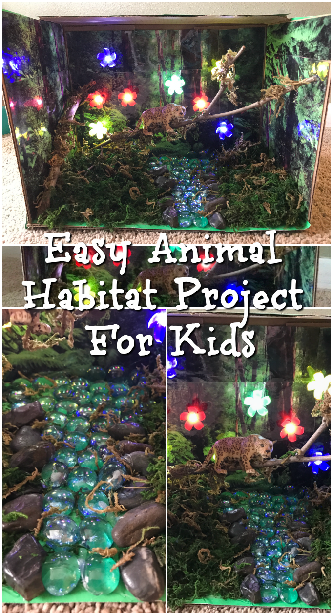 easy animal habitat project for kids-with step by step instructions