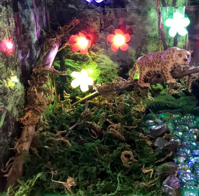 Rainforest Habitat Projects