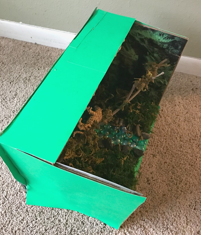 Make Your Own Diorama: Easy Animal Habitat Project For Kids-With Step By Step