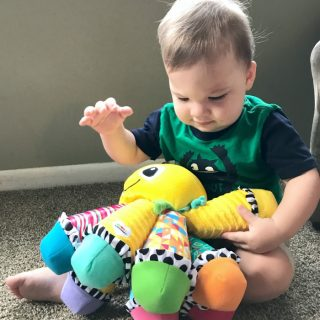 Play and Learning with Lamaze Toys